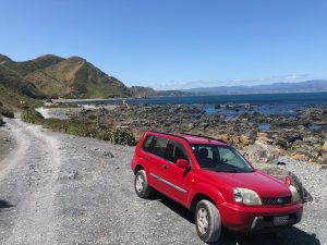 Gail the X-Trail in a scenic environment